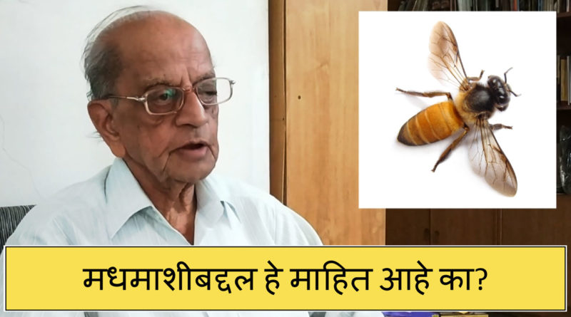 मधमाशीबद्दल हे माहित आहे का?